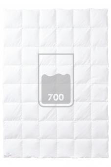 KAUFFMANN ELEGANCE 700 Warm