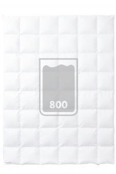 KAUFFMANN PRINZESSIN 800 Medium
