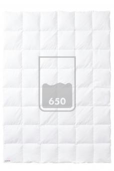 KAUFFMANN TRUE LEGEND 650 Leicht